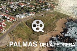 Reel Palmas de La Pedrera 2010